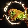 Цирки в Алтынае